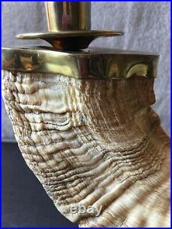 Vintage Pair Genuine Rams Horn Candlestick Candle Holders Brass Trim Regency